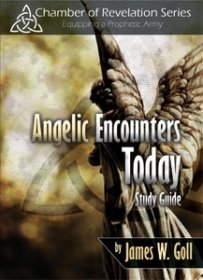 Angelic Encounters Study Guide